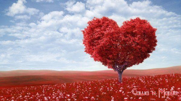 Поради як знайти свою любов